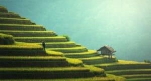 Kambodscha Urlaub Reisen