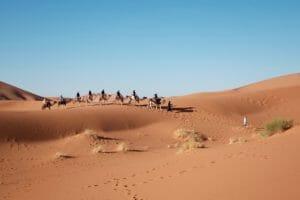 Wüste Ägyten Reise