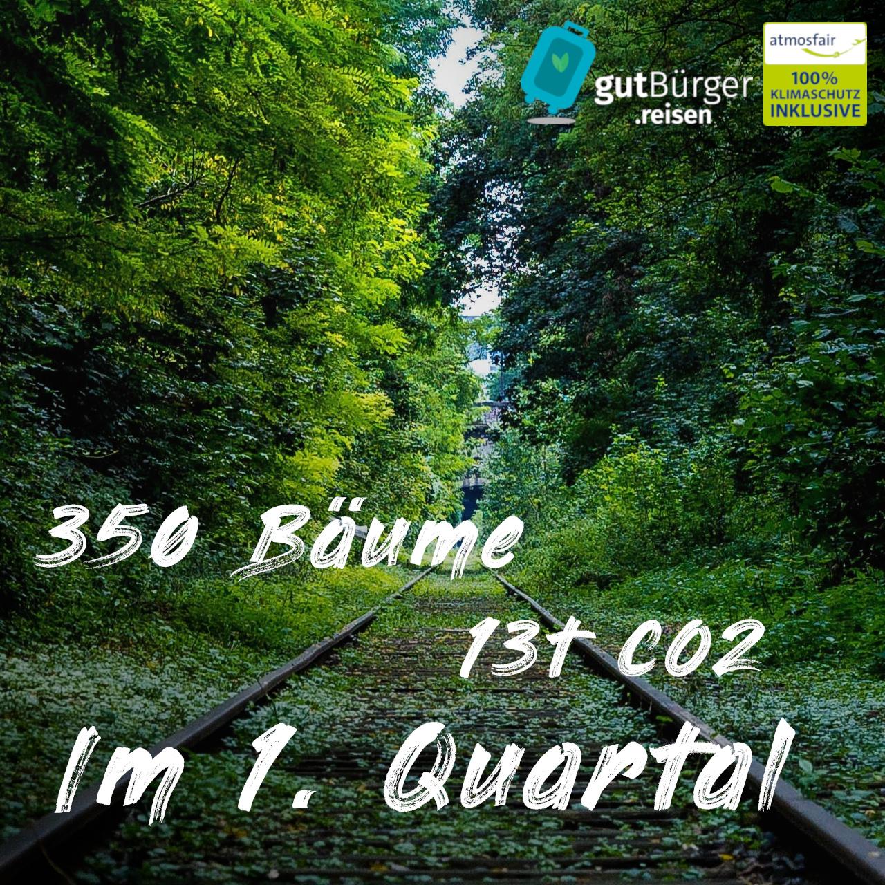 Durch gute Reisen: 350 Bäume, 13t CO2